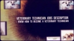 Have a look at this video to see how you can turn out to be a veterinary tech.